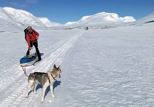 Ski touring in the Arctic