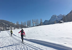 Cross-country track skiing in the Alps