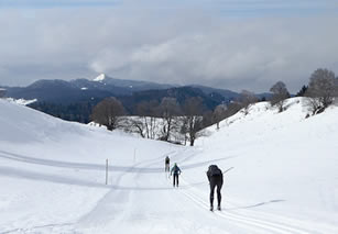 Cross-country skiing in the Jura